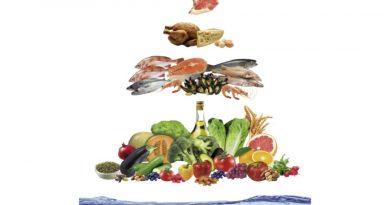 Qual a melhor dieta para a saúde?